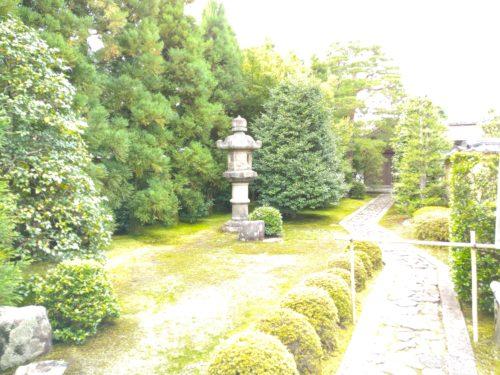 大徳寺の庭