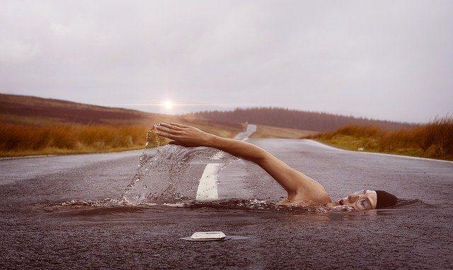 積極的に泳ぐ姿